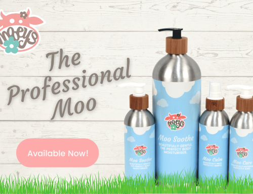 Mooeys Launches The Professional Moo Product Range