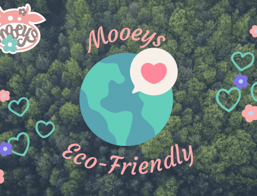 Eco-Friendly Moo shares Mooeys' Eco-conscious Tips